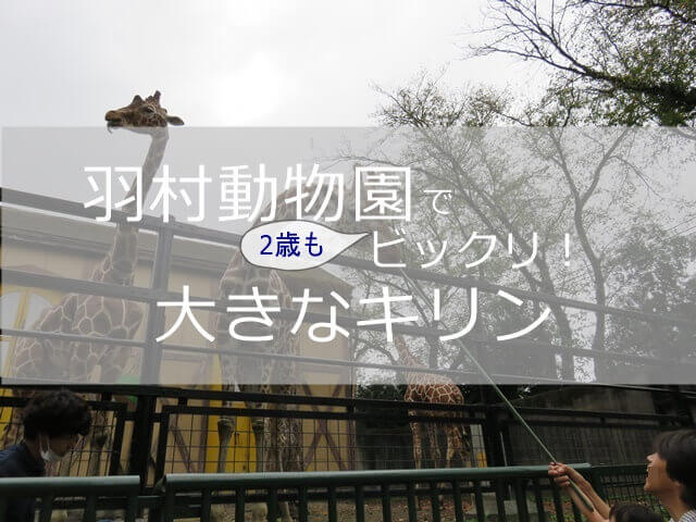 記事タイトル『羽村動物園へ家族で行ってきた体験談と感想!2歳児の子どもの反応と様子についても』のアイキャッチ画像