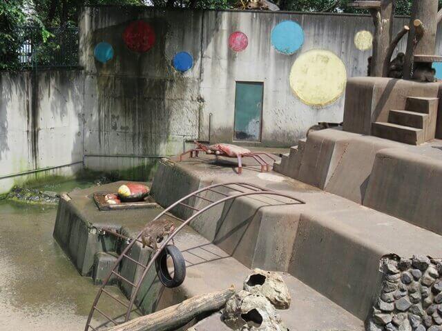 羽村動物園サル山に置かれたカニのオブジェ
