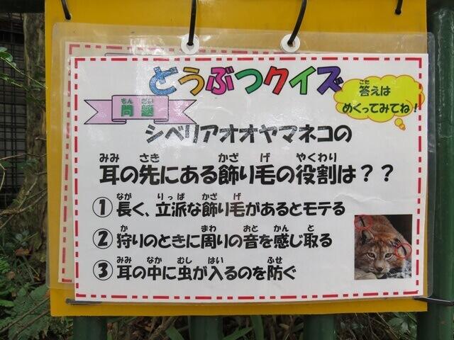 羽村動物園の動物クイズ