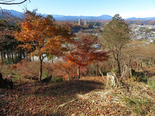 小松沢レジャー農園のハイキングコースの頂上から見た景色