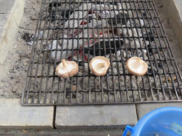 小松沢レジャー農園で採れたシイタケを焼いているところ