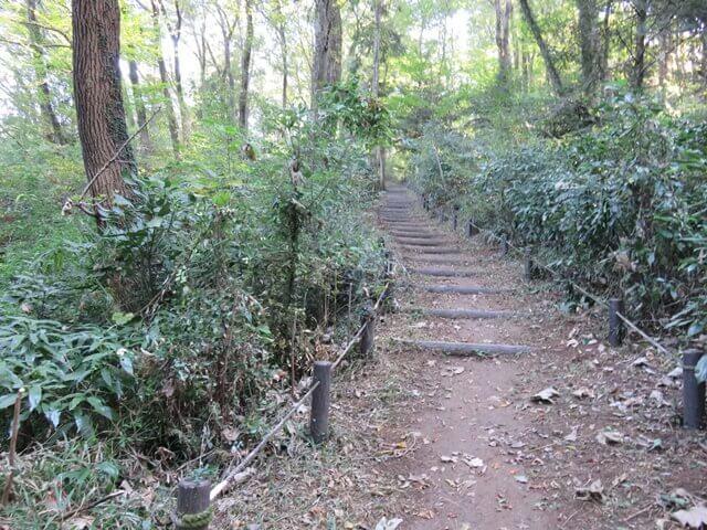 六道山公園のゆるやかな木の階段の道