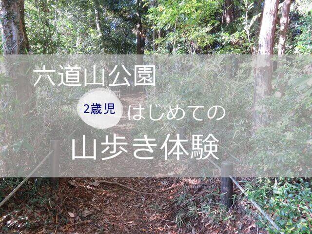 記事タイトル『六道山公園で2歳がはじめての山歩き体験!親から見た子供の様子と一緒に歩いた感想』のアイキャッチ画像
