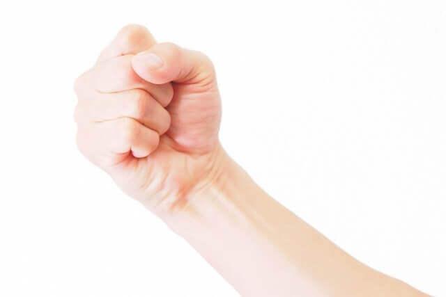 大人の握りこぶしの画像