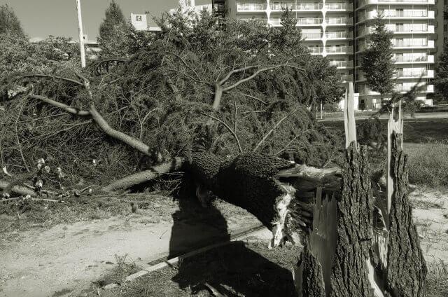 台風のイメージ画像2