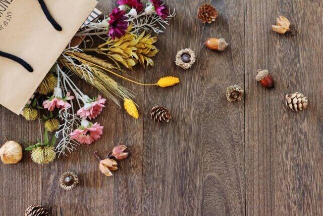 秋の木の実のイメージ画像