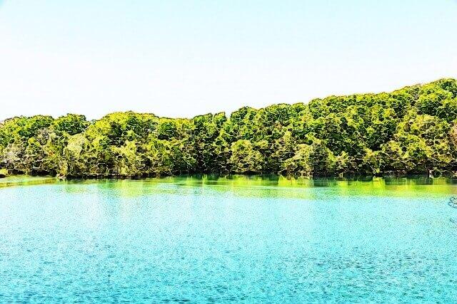 池のイメージ画像