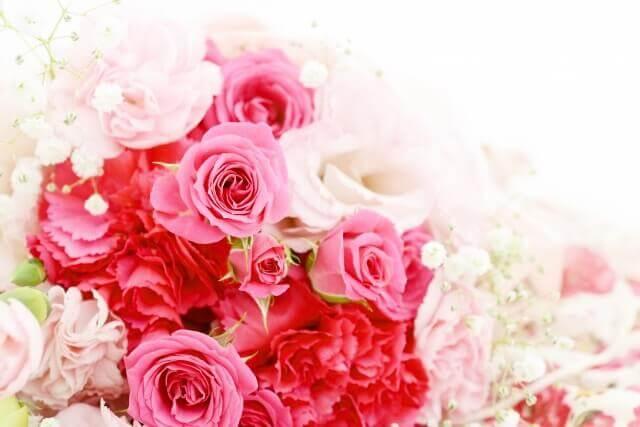 美しい花のイメージ画像