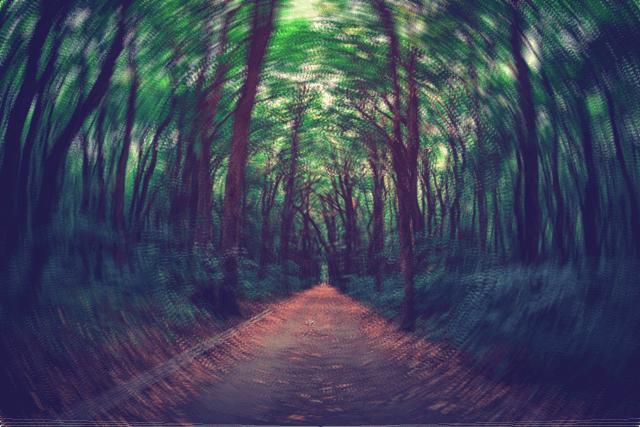 迷宮の入り口のイメージ画像